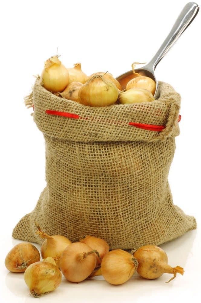 onions_bag