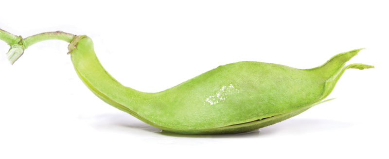 prasini_diaita-«Πράσινη» δίαιτα μετά τις γιορτές-naturanrg