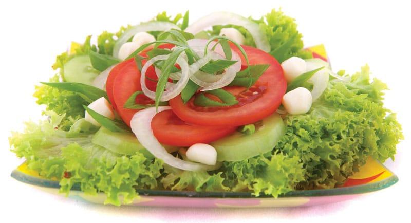 salad-Πικ-νικ απολαμβάνοντας νοστιμιές στη φύση