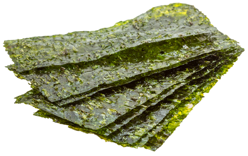 nori-algae