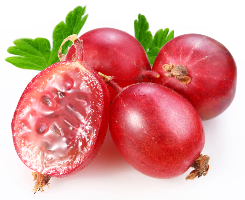red-gooseberry