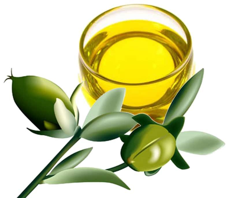 jojoba-oil-Αιθέρια έλαια: «κλέψτε» την ομορφιά της φύσης