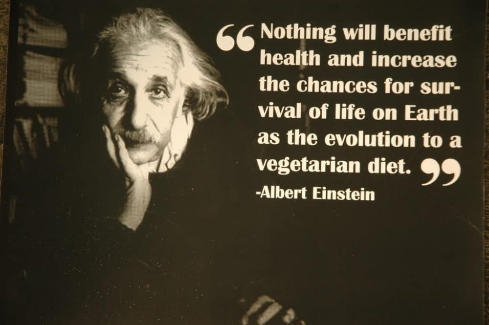 Πώς θα κάνω τη μετάβαση στη vegan διατροφή;