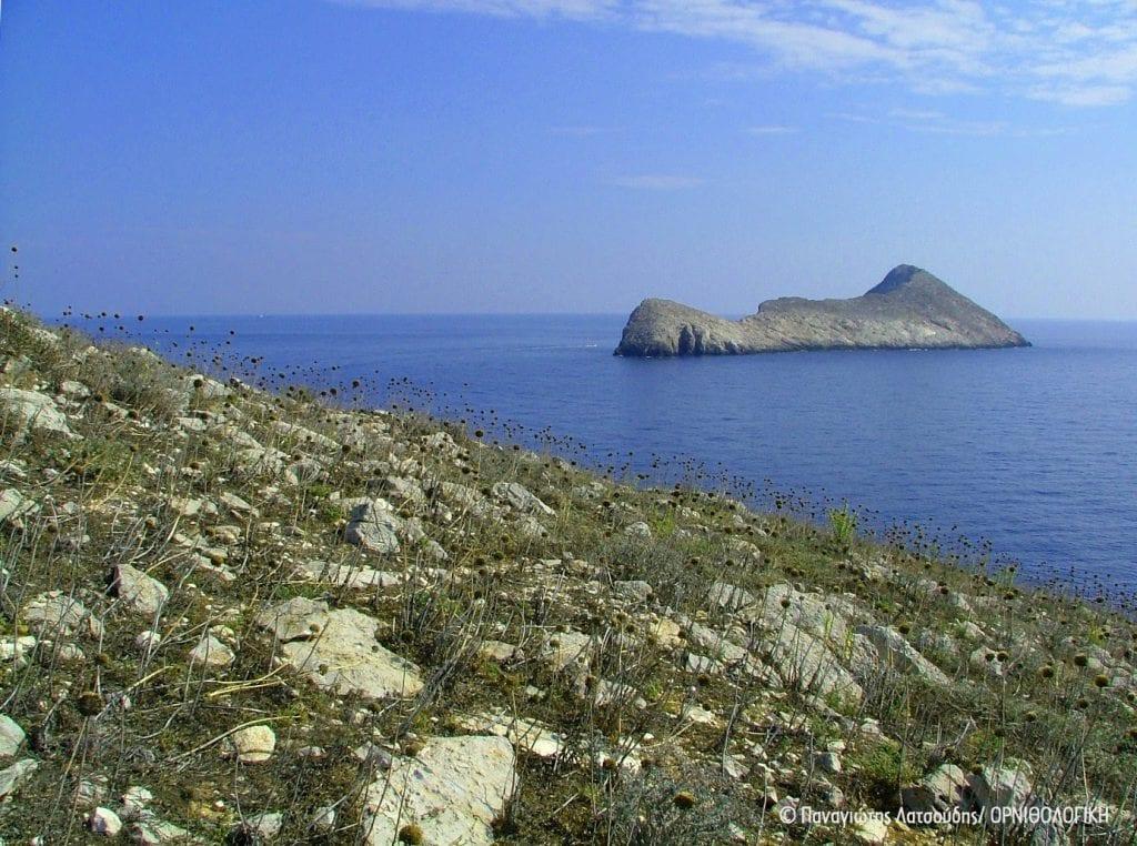 Επέκταση του Δικτύου Natura 2000. Mια μεγάλη νίκη για τη θαλάσσια βιοποικιλότητα